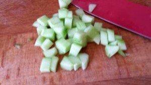 Salade_de_graines_06